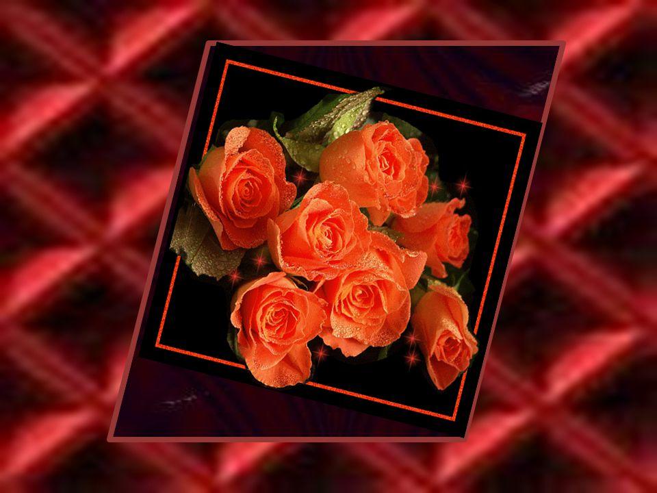 Schoonheid zit van buiten liefde binnenin Zonder schoonheid kan men leven zonder liefde heeft geen zin