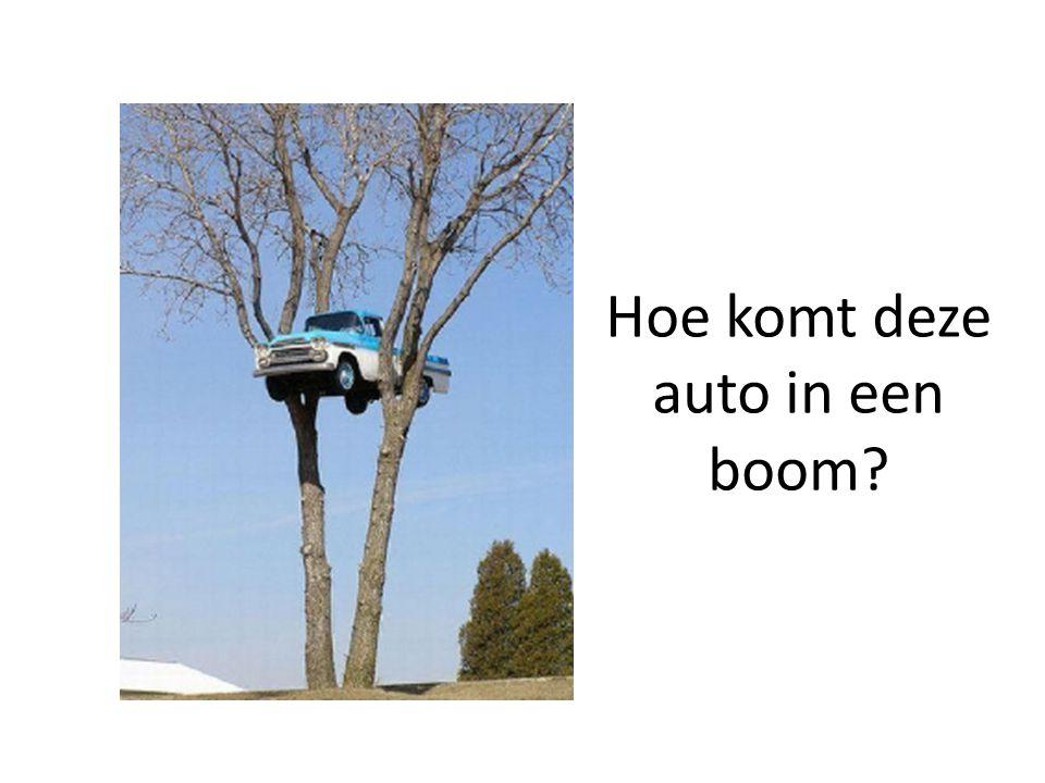 Hoe komt deze auto in een boom?