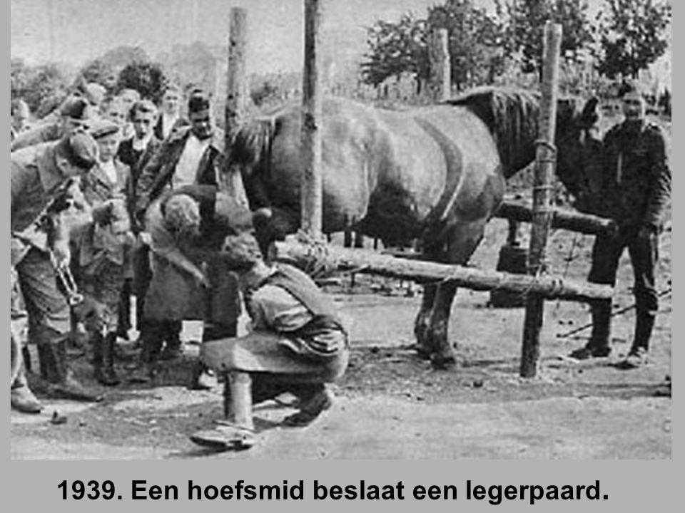 1939. Een hoefsmid beslaat een legerpaard.