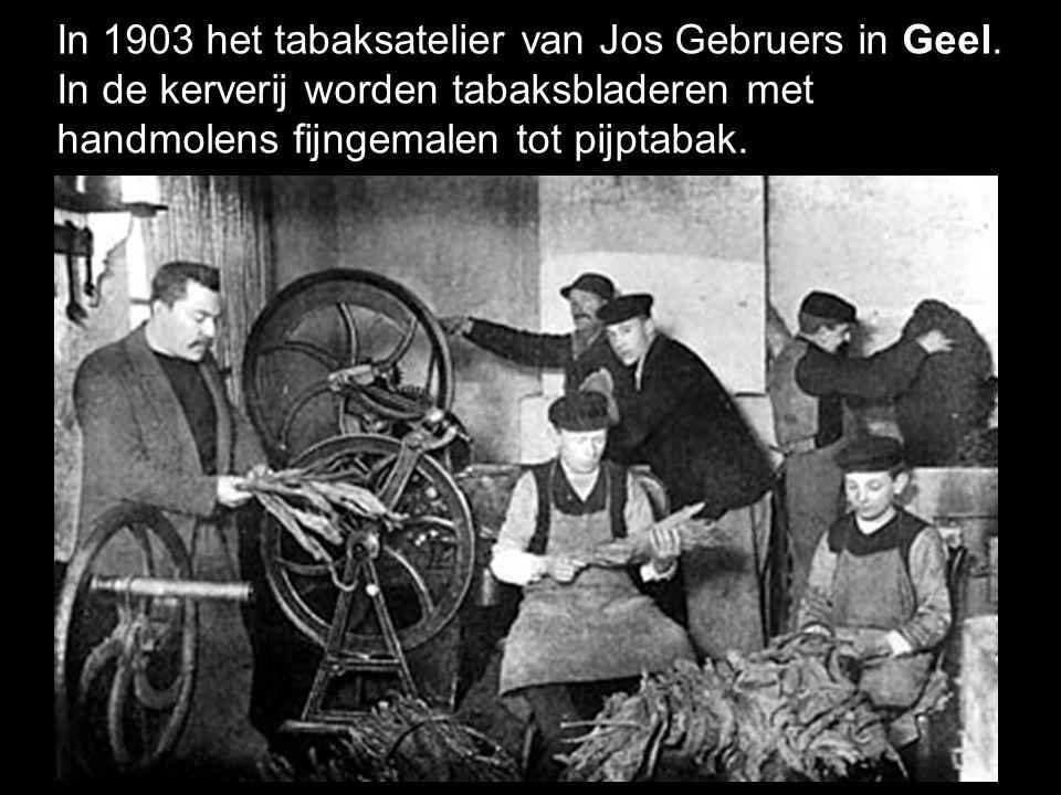 In 1903 het tabaksatelier van Jos Gebruers in Geel.