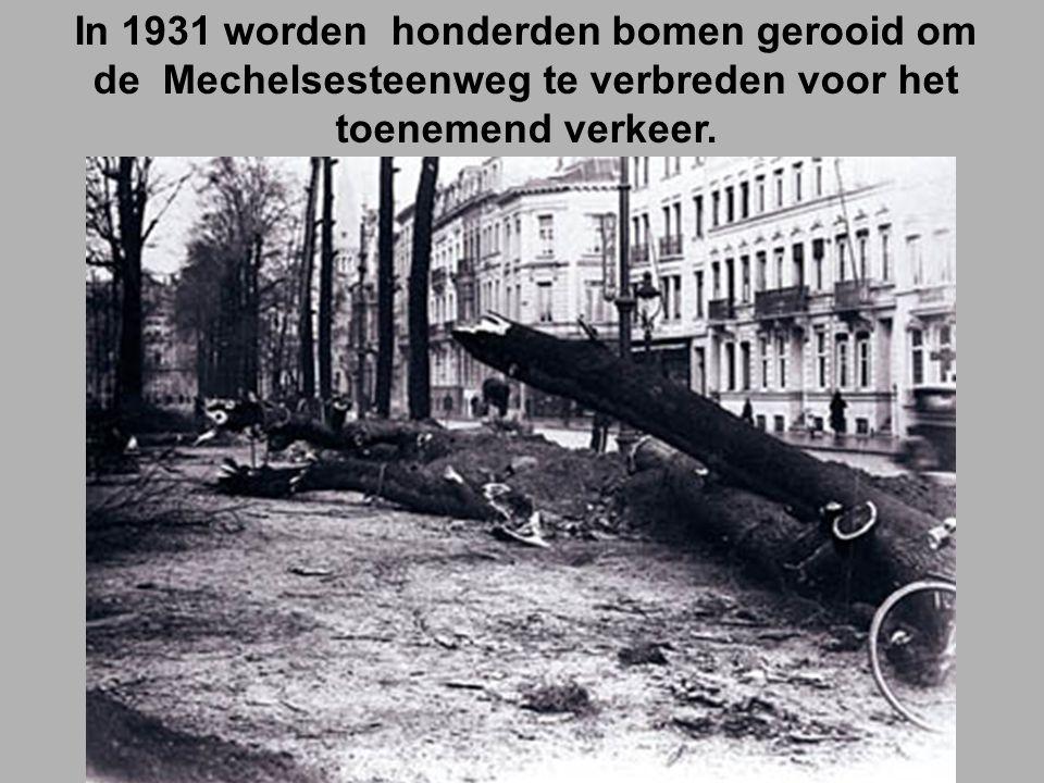In 1931 worden honderden bomen gerooid om de Mechelsesteenweg te verbreden voor het toenemend verkeer.
