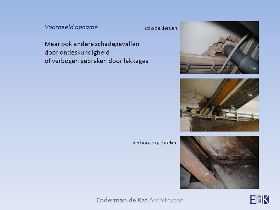 Enderman de Kat Architecten Voorbeeld opname Maar ook andere schadegevallen door ondeskundigheid of verbogen gebreken door lekkages schade derden verb