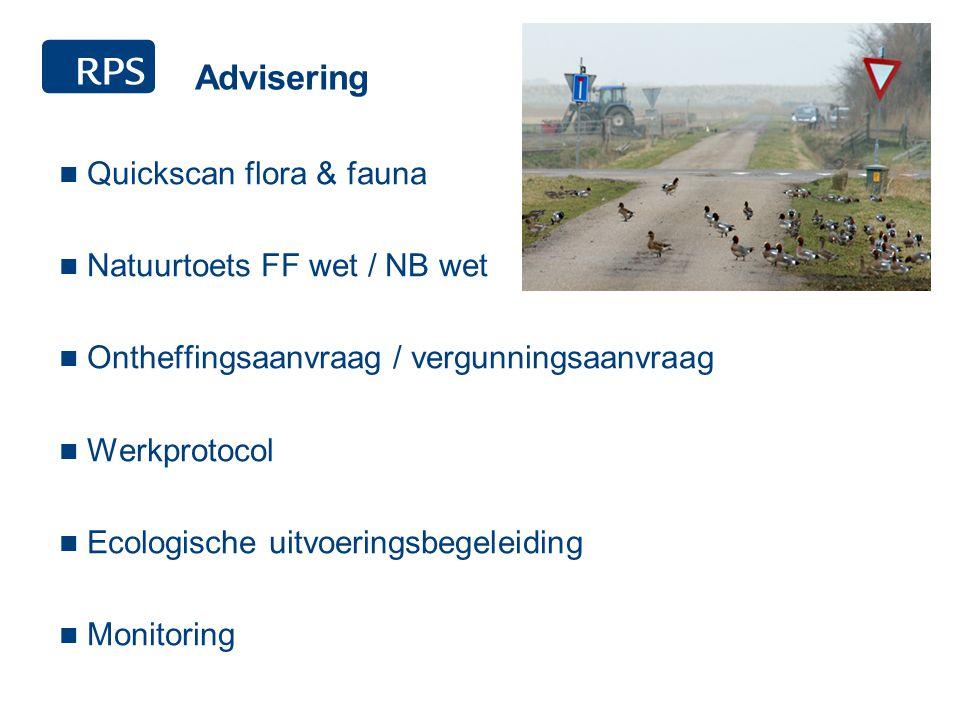 Advisering Quickscan flora & fauna Natuurtoets FF wet / NB wet Ontheffingsaanvraag / vergunningsaanvraag Werkprotocol Ecologische uitvoeringsbegeleiding Monitoring