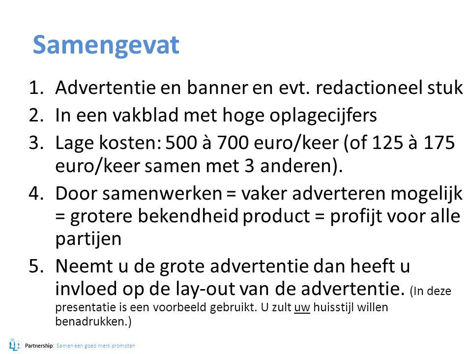 Samengevat 1.Advertentie en banner en evt. redactioneel stuk 2.In een vakblad met hoge oplagecijfers 3.Lage kosten: 500 à 700 euro/keer (of 125 à 175