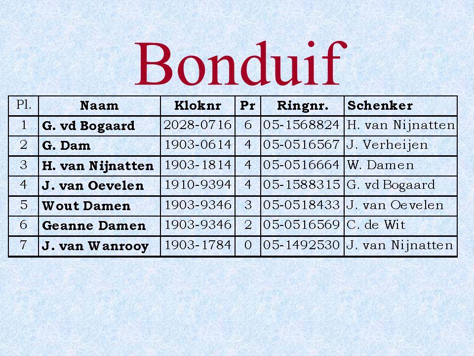 Bonduif