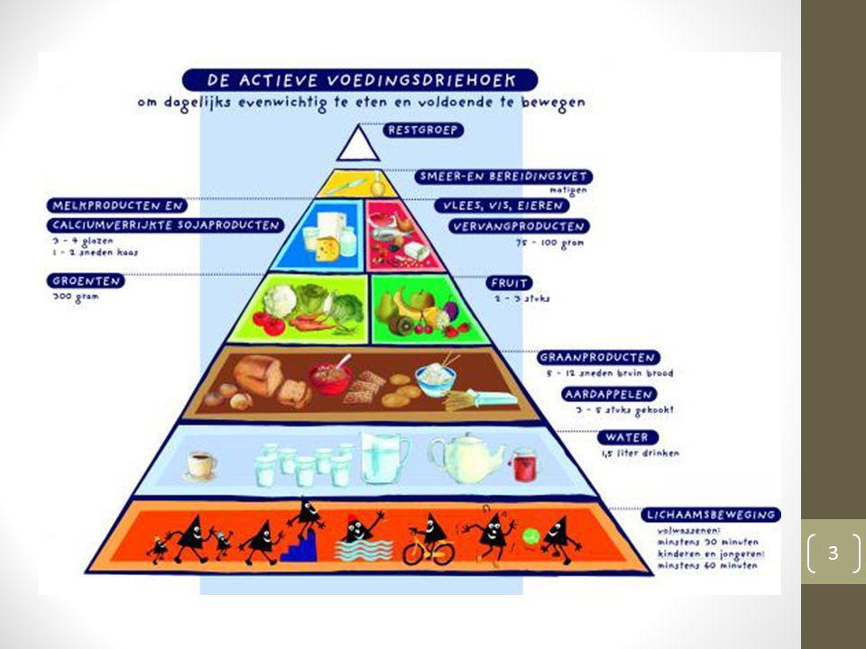 Wat is de Actieve Voedingsdriehoek.