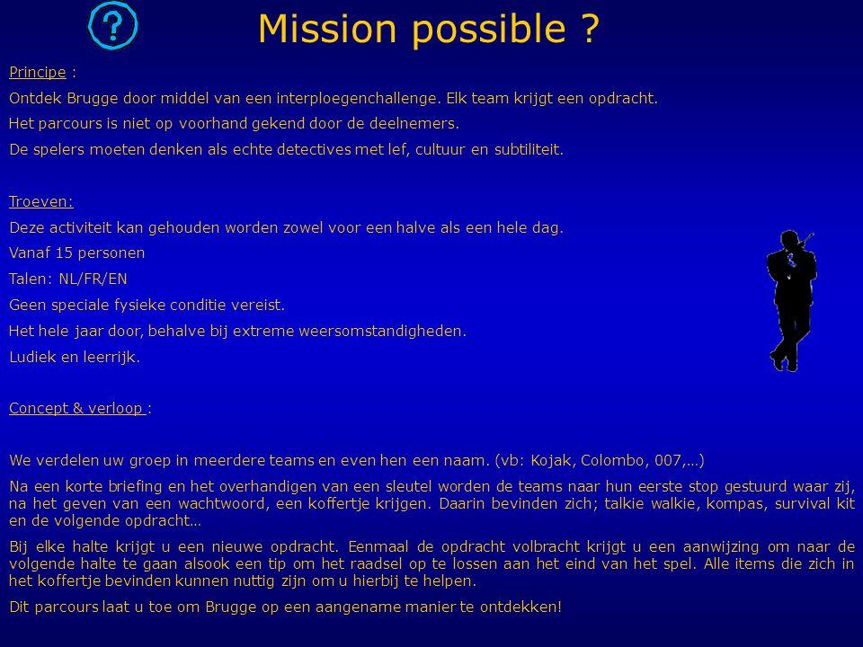 Principe : Ontdek Brugge door middel van een interploegenchallenge. Elk team krijgt een opdracht. Het parcours is niet op voorhand gekend door de deel