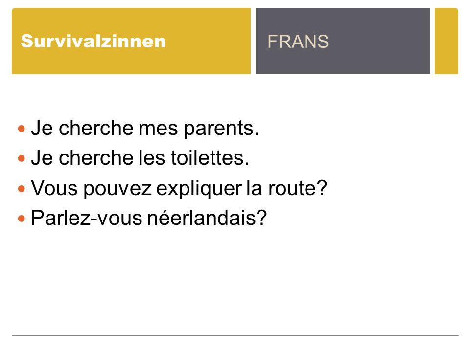 Survivalzinnen Je cherche mes parents. Je cherche les toilettes. Vous pouvez expliquer la route? Parlez-vous néerlandais? FRANS