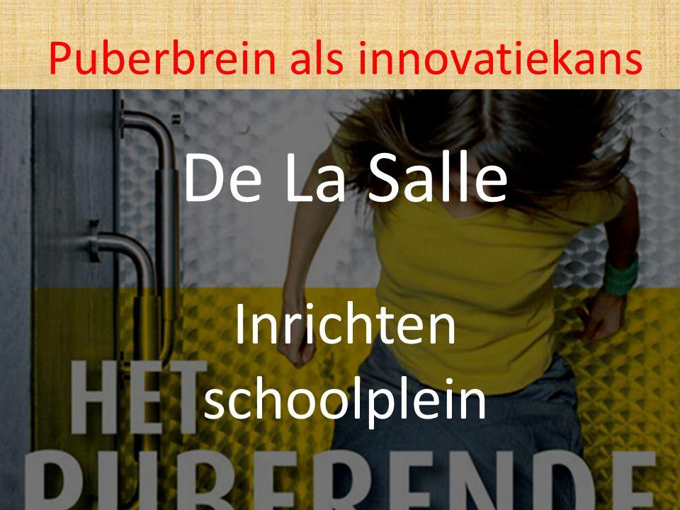 De La Salle Inrichten schoolplein Puberbrein als innovatiekans