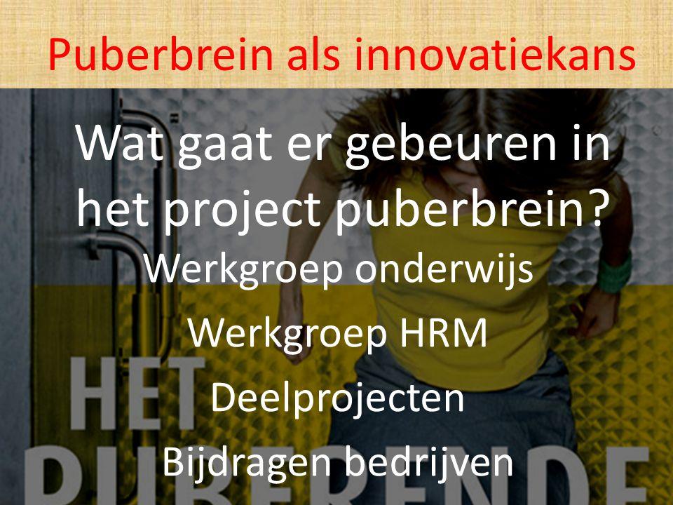 Wat gaat er gebeuren in het project puberbrein? Werkgroep onderwijs Werkgroep HRM Deelprojecten Bijdragen bedrijven Puberbrein als innovatiekans