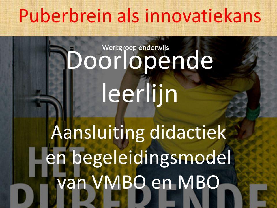 Doorlopende leerlijn Aansluiting didactiek en begeleidingsmodel van VMBO en MBO Puberbrein als innovatiekans Werkgroep onderwijs