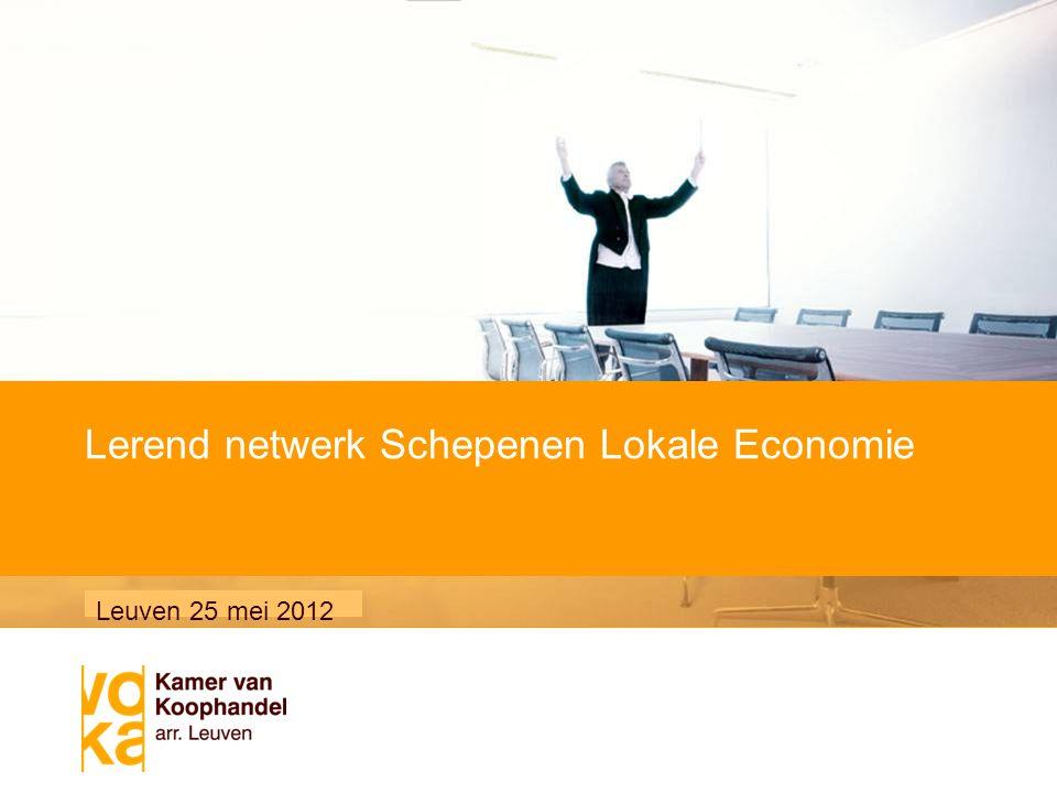 Voornaam Naam / 8 mei 2007 Subtitel van de presentatie Lerend netwerk Schepenen Lokale Economie Leuven 25 mei 2012