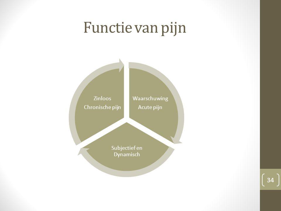 Functie van pijn Waarschuwing Acute pijn Subjectief en Dynamisch Zinloos Chronische pijn 34