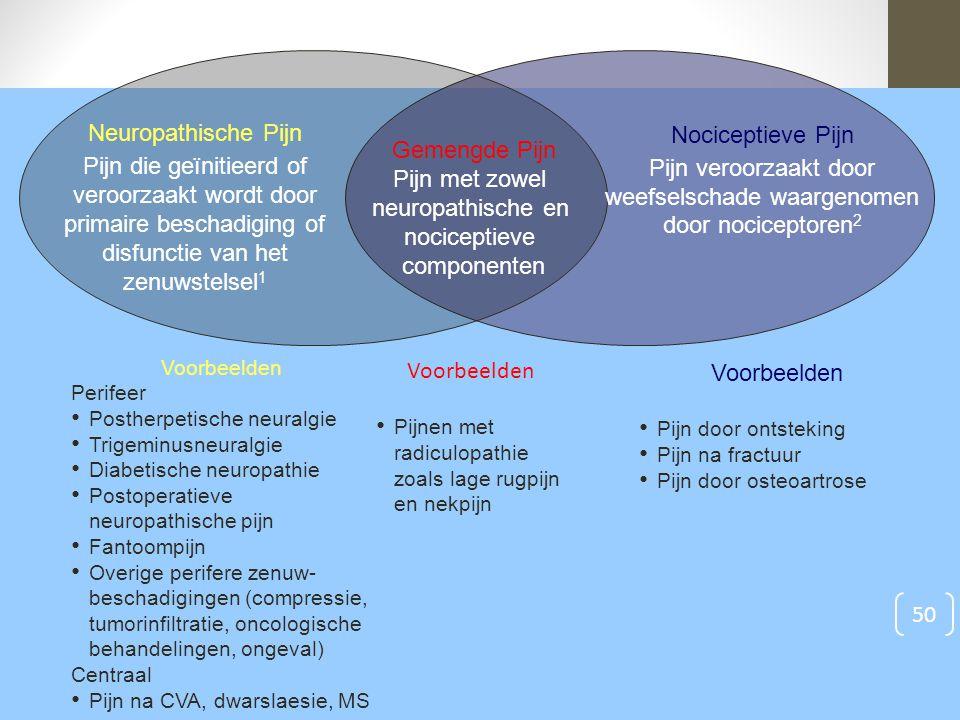 Voorbeelden Perifeer Postherpetische neuralgie Trigeminusneuralgie Diabetische neuropathie Postoperatieve neuropathische pijn Fantoompijn Overige peri