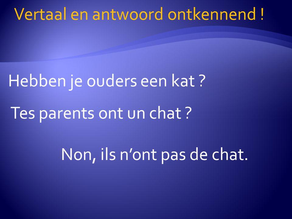 Hebben je ouders een kat .Vertaal en antwoord ontkennend .