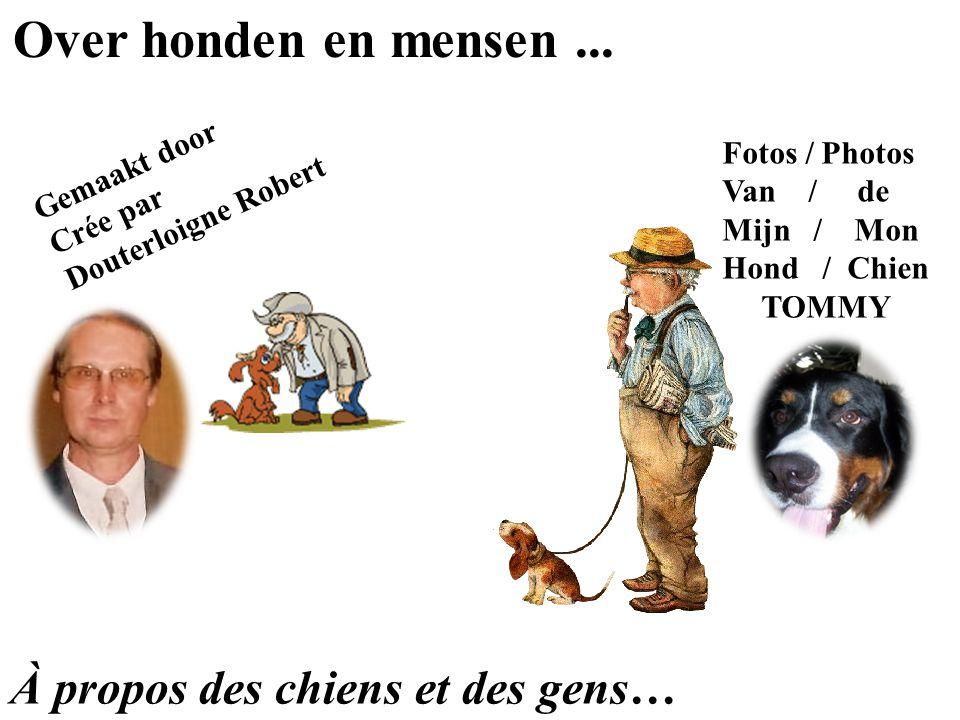 Over honden en mensen...
