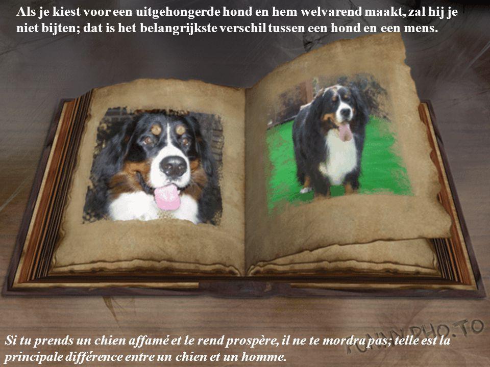 Honden houden van hun vrienden en bijten hun vijanden, heel anders dan mensen, die niet in staat zijn een verschil te maken tussen liefde en haat.