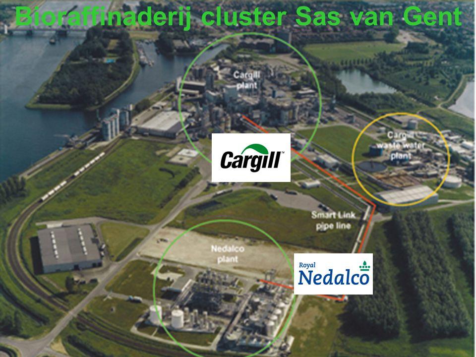 Bioraffinaderij cluster Sas van Gent