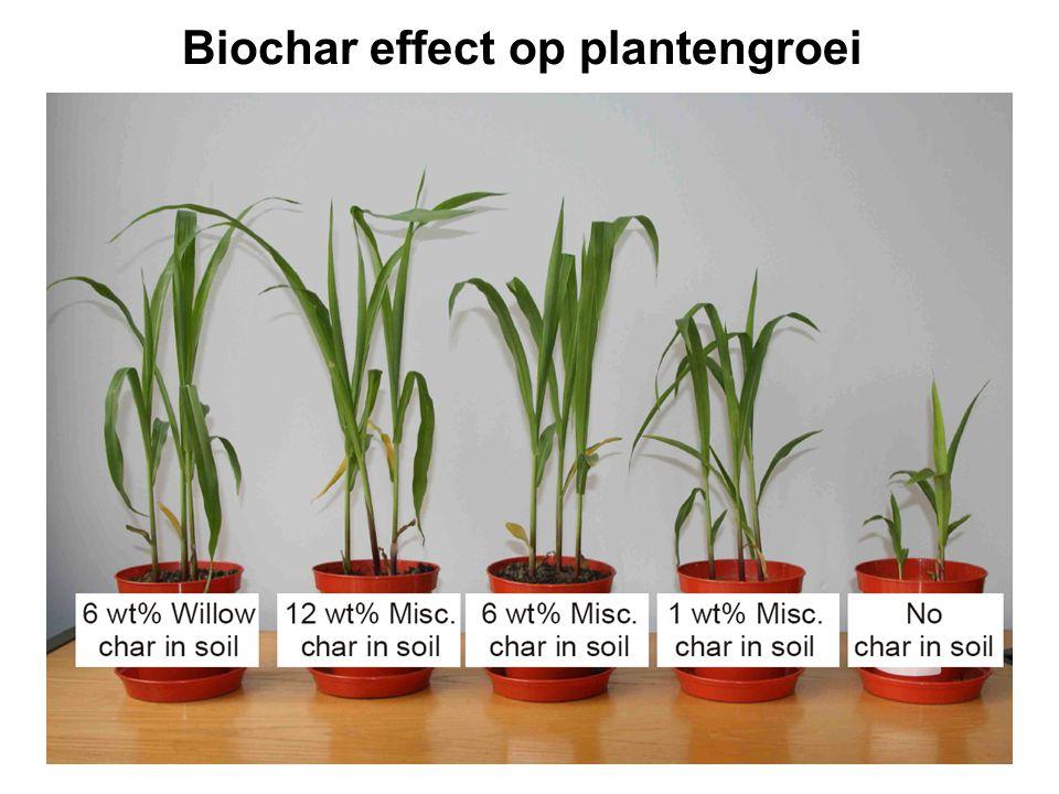 Biochar effect op plantengroei