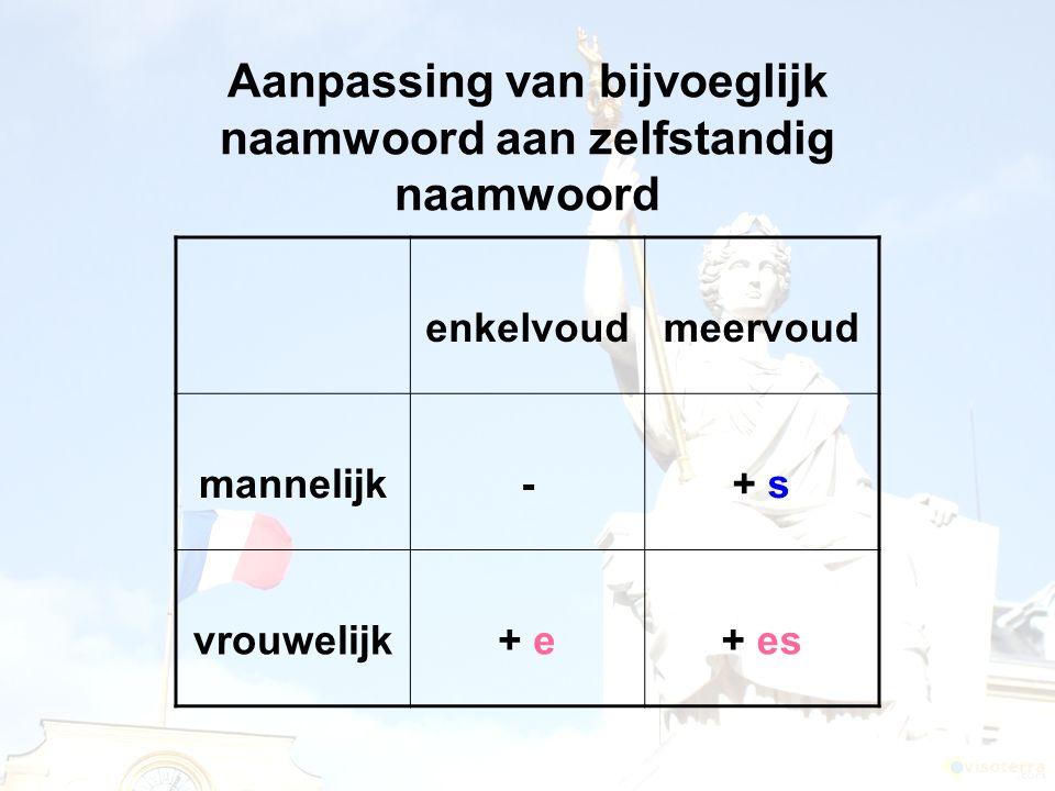Aanpassing van bijvoeglijk naamwoord aan zelfstandig naamwoord enkelvoudmeervoud mannelijk-+ s vrouwelijk+ e+ es