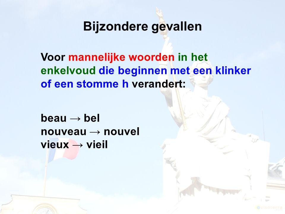 Bijzondere gevallen Voor mannelijke woorden in het enkelvoud die beginnen met een klinker of een stomme h verandert: beau → bel nouveau → nouvel vieux