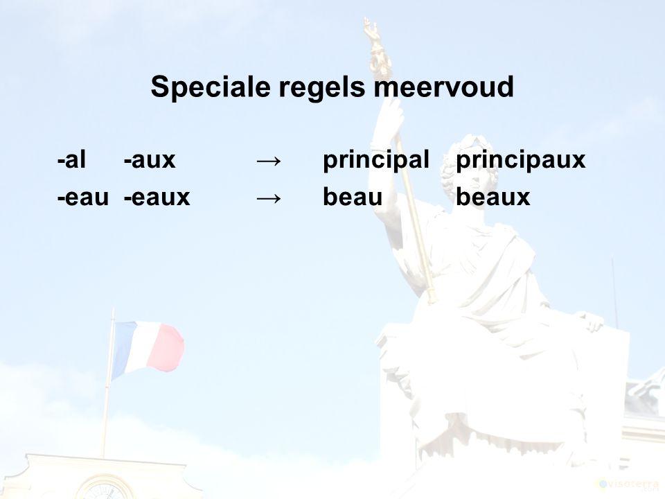 Speciale regels meervoud -al-aux →principalprincipaux -eau-eaux→beaubeaux