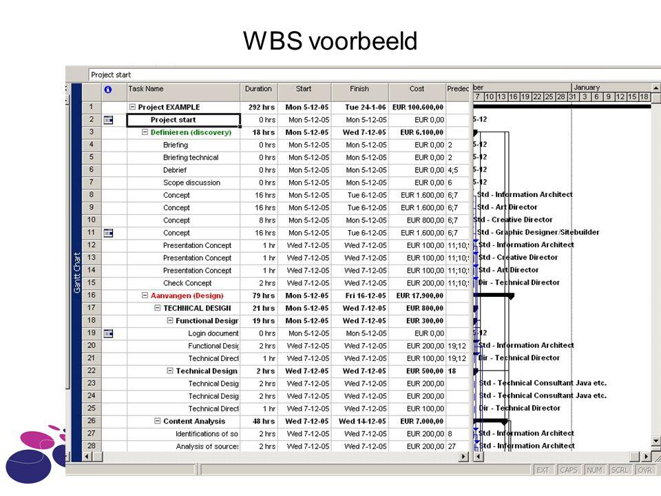 WBS voorbeeld