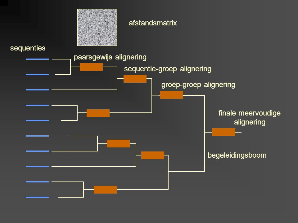 sequenties afstandsmatrix paarsgewijs alignering sequentie-groep alignering groep-groep alignering begeleidingsboom finale meervoudige alignering