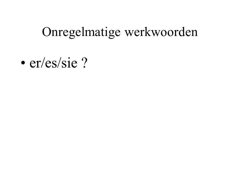 Onregelmatige werkwoorden er/es/sie ?