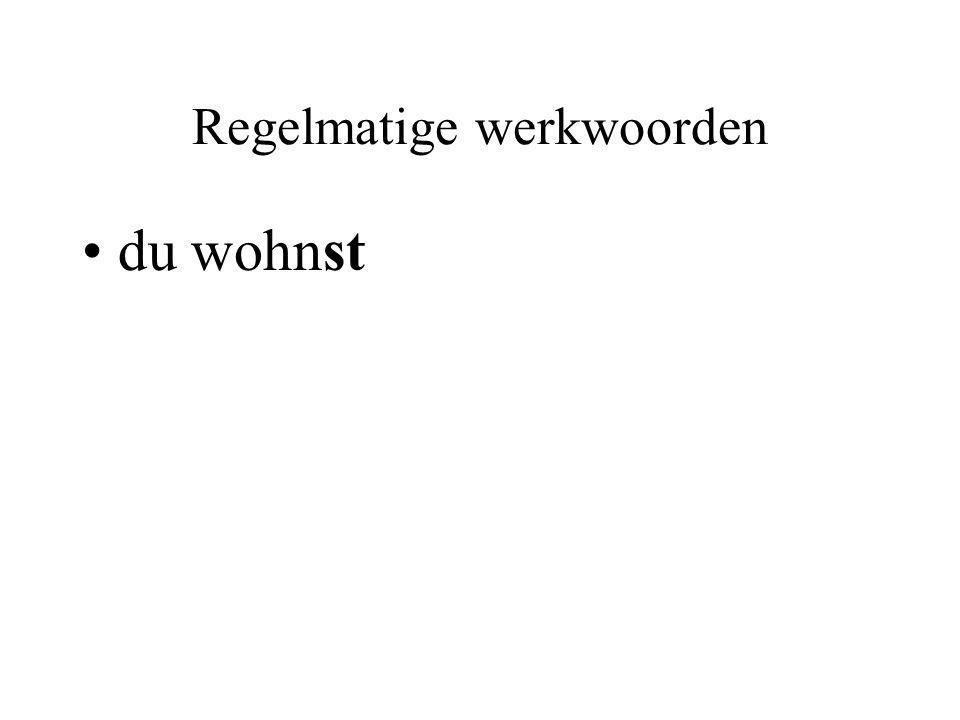 Onregelmatige werkwoorden er/es/sie hat