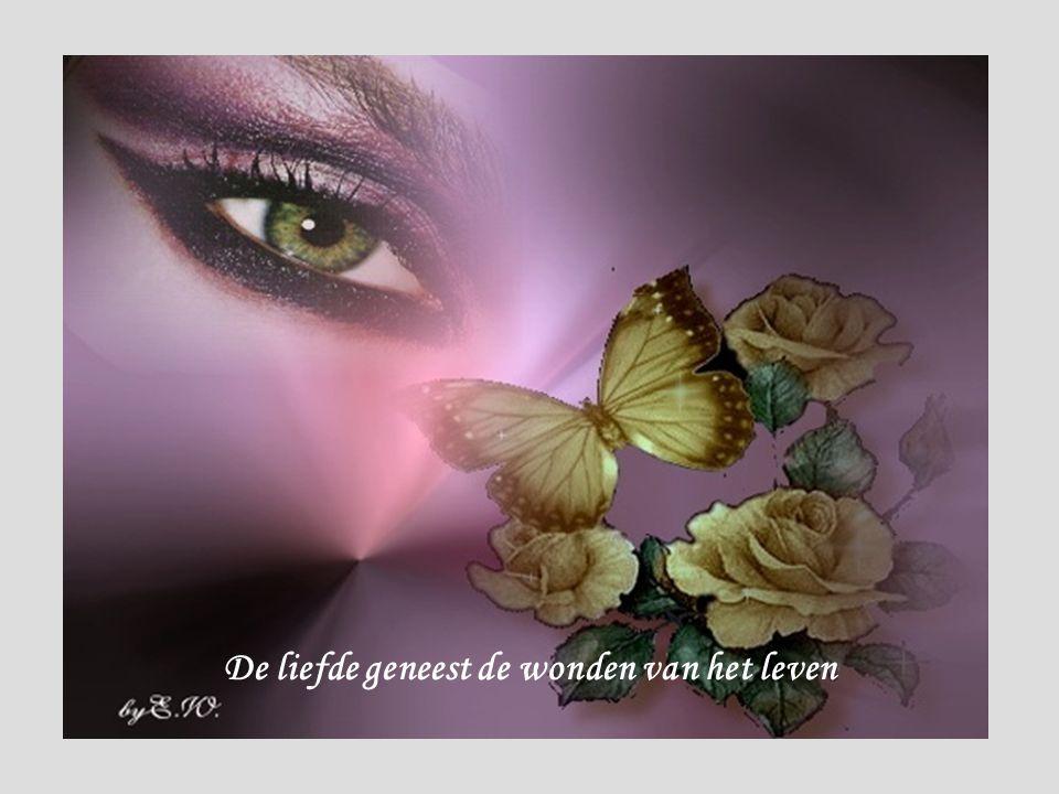De liefde geneest de wonden van het leven