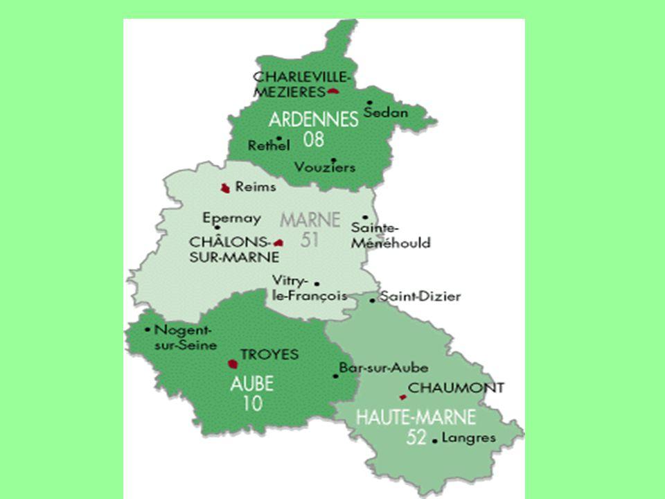 3 DRUIVENSOORTEN In de Champagne staan drie druivenrassen: 37% van de wijngaarden is beplant met Pinot noir, 37% met Pinot meunier en 26% met Chardonnay.