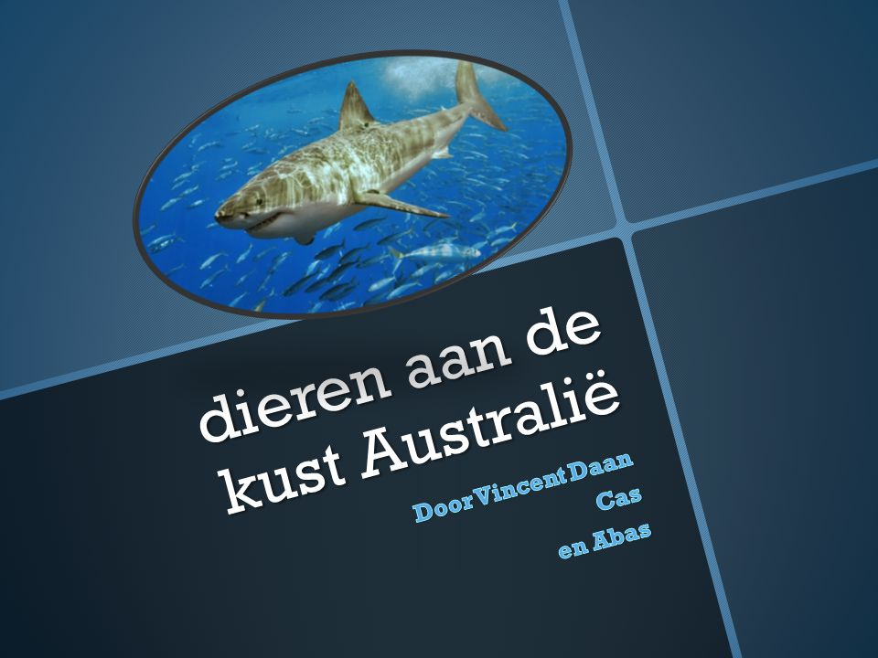 dieren aan de kust Australië