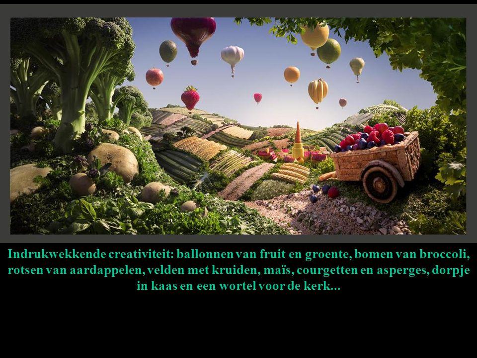 Indrukwekkende creativiteit: ballonnen van fruit en groente, bomen van broccoli, rotsen van aardappelen, velden met kruiden, maïs, courgetten en asper