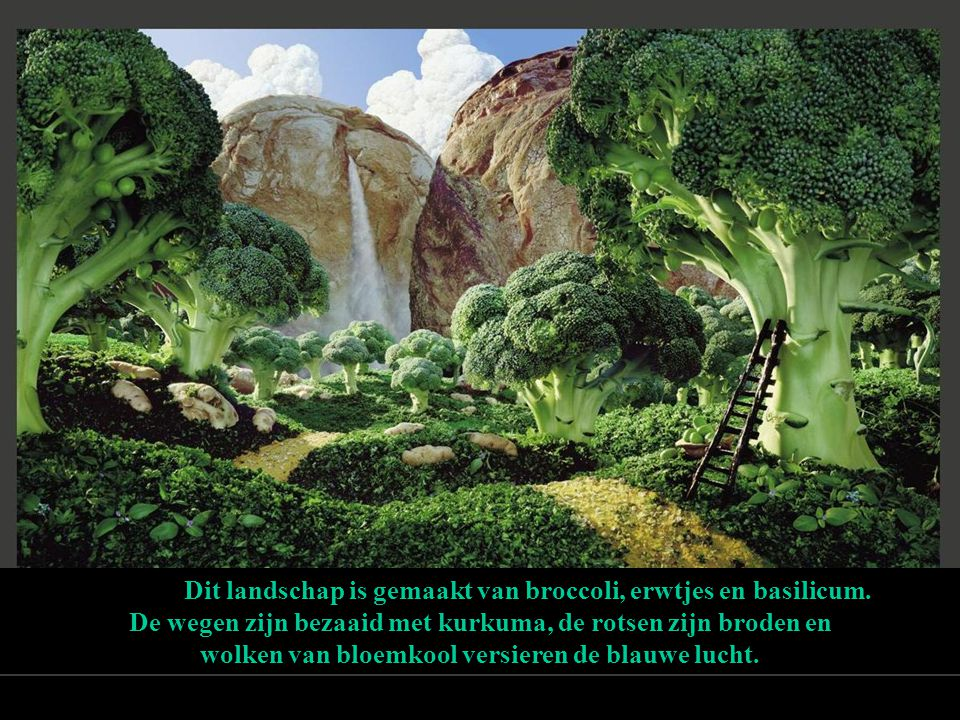 Dit landschap is gemaakt van broccoli, erwtjes en basilicum. De wegen zijn bezaaid met kurkuma, de rotsen zijn broden en wolken van bloemkool versiere