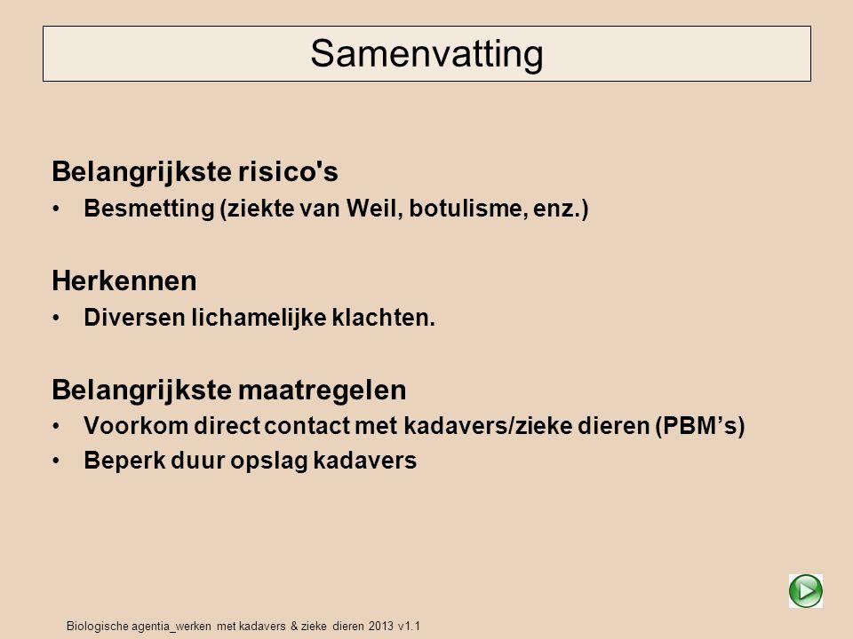 Biologische agentia_werken met kadavers & zieke dieren 2013 v1.1 Samenvatting Belangrijkste risico s Besmetting (ziekte van Weil, botulisme, enz.) Herkennen Diversen lichamelijke klachten.