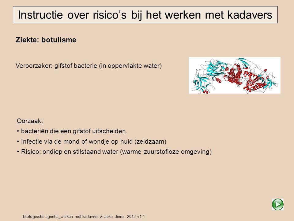 Biologische agentia_werken met kadavers & zieke dieren 2013 v1.1 Ziekte: botulisme Veroorzaker: gifstof bacterie (in oppervlakte water) Instructie ove
