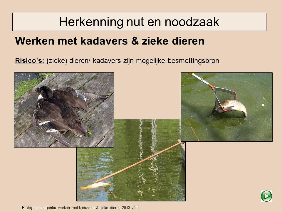 Biologische agentia_werken met kadavers & zieke dieren 2013 v1.1 Doel van deze instructie Doel Herkennen van situaties en informatie geven over de belangrijkste risico s en maatregelen.