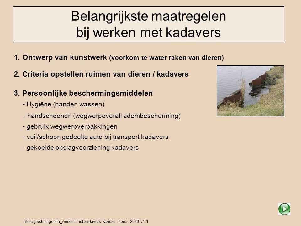 Biologische agentia_werken met kadavers & zieke dieren 2013 v1.1 PBM's voorkomen contact met kadavers / ziekte dieren Beperk contact Transport Opslag Oplossingen Beperk de risico's bij handelingen met zieke dieren of kadavers door: gebruik van hulpmiddelen (bijv.