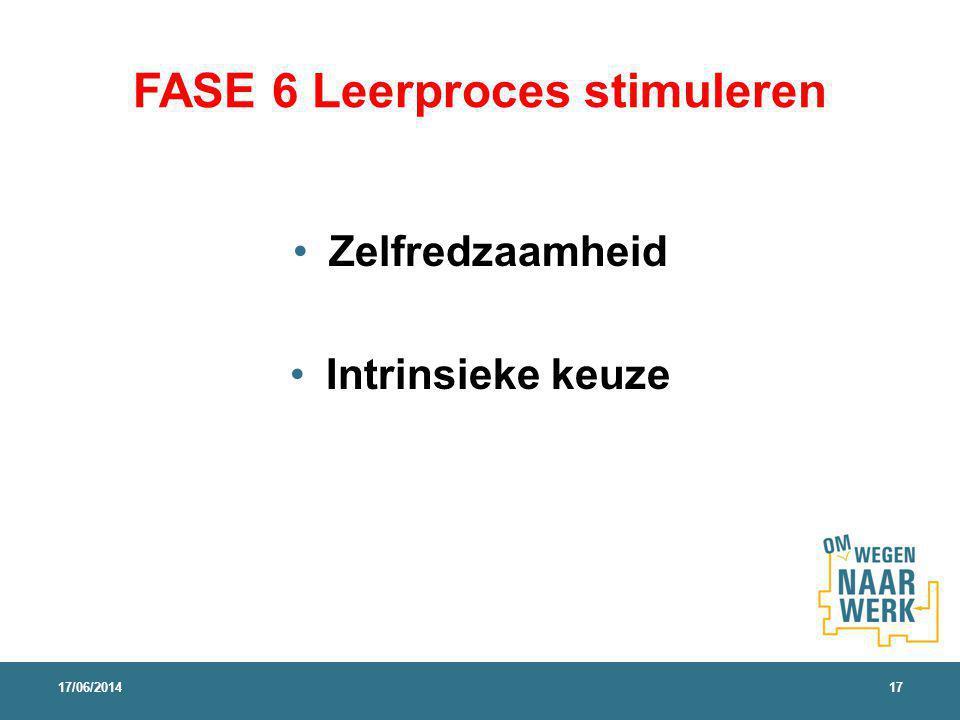 FASE 6 Leerproces stimuleren Zelfredzaamheid Intrinsieke keuze 17/06/201417