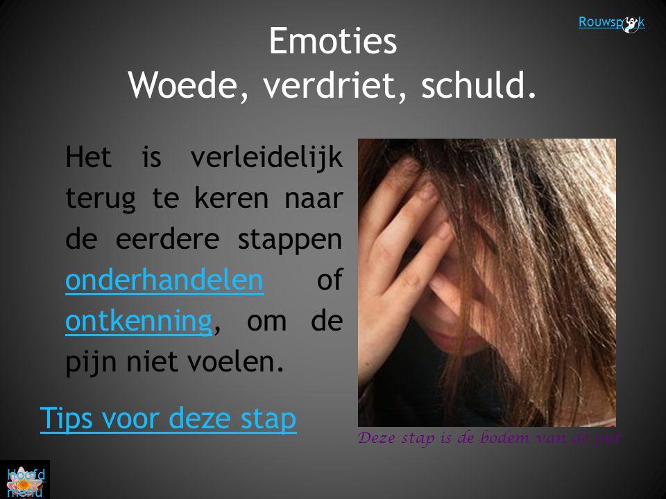 Emoties Woede, verdriet, schuld. Het is verleidelijk terug te keren naar de eerdere stappen onderhandelen of ontkenning, om de pijn niet voelen. onder