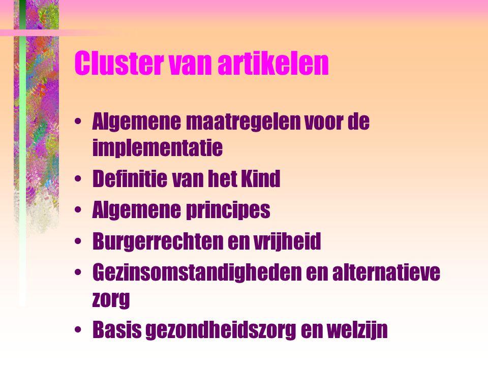 Cluster van artikelen Algemene maatregelen voor de implementatie Definitie van het Kind Algemene principes Burgerrechten en vrijheid Gezinsomstandighe