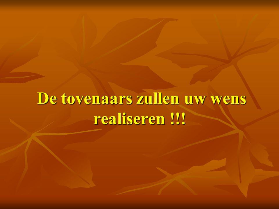 De tovenaars zullen uw wens realiseren !!! De tovenaars zullen uw wens realiseren !!!