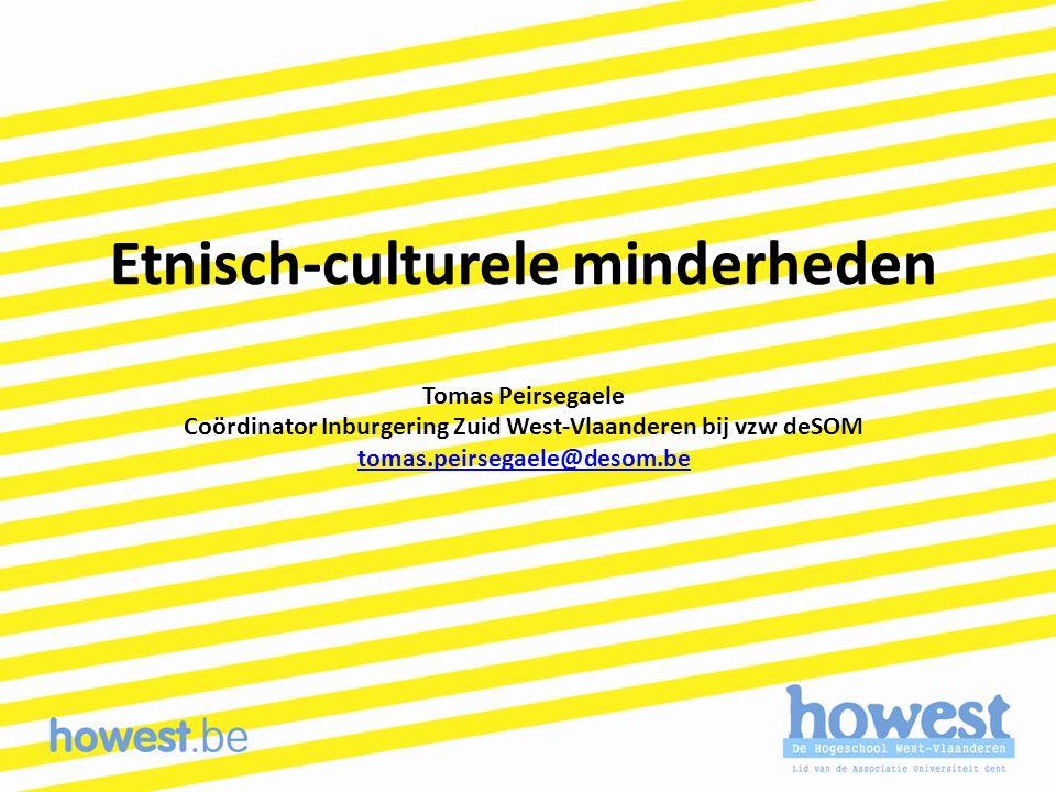 Etnisch-culturele minderheden Tomas Peirsegaele Coördinator Inburgering Zuid West-Vlaanderen bij vzw deSOM tomas.peirsegaele@desom.be