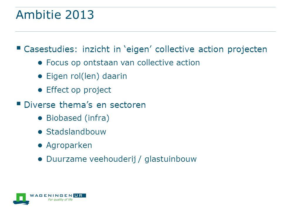 Ambitie 2013  Casestudies: inzicht in 'eigen' collective action projecten ● Focus op ontstaan van collective action ● Eigen rol(len) daarin ● Effect