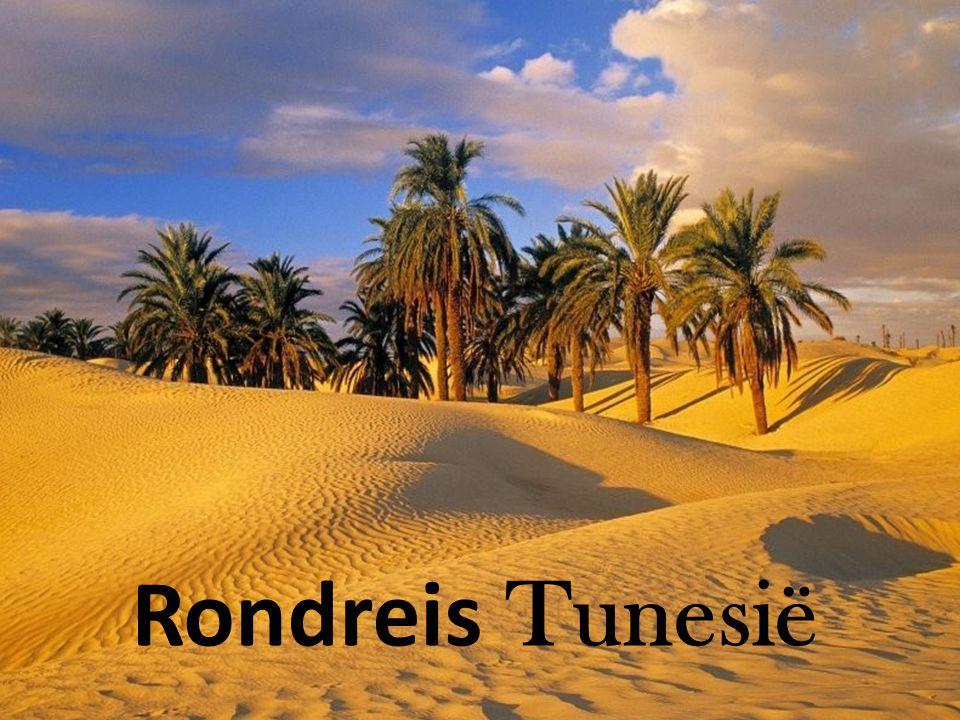 Rondreis Tunesië