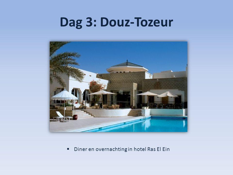 Dag 3: Douz-Tozeur  Diner en overnachting in hotel Ras El Ein