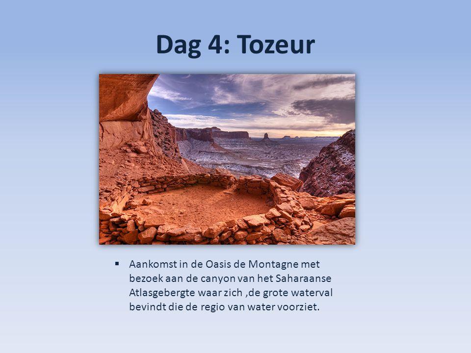 Dag 4: Tozeur  Aankomst in de Oasis de Montagne met bezoek aan de canyon van het Saharaanse Atlasgebergte waar zich,de grote waterval bevindt die de