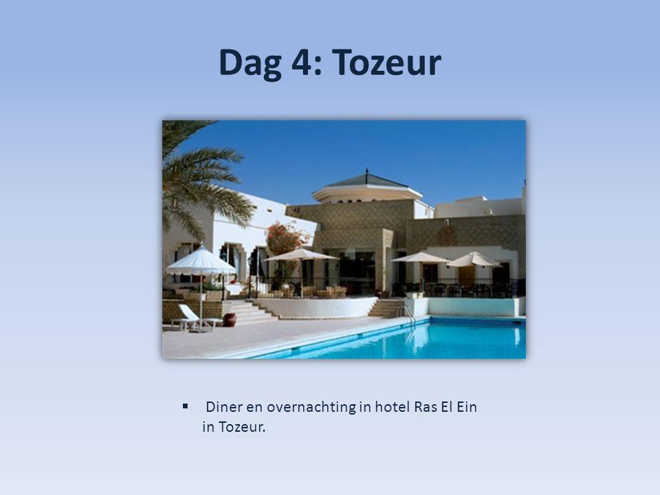 Dag 4: Tozeur  Diner en overnachting in hotel Ras El Ein in Tozeur.