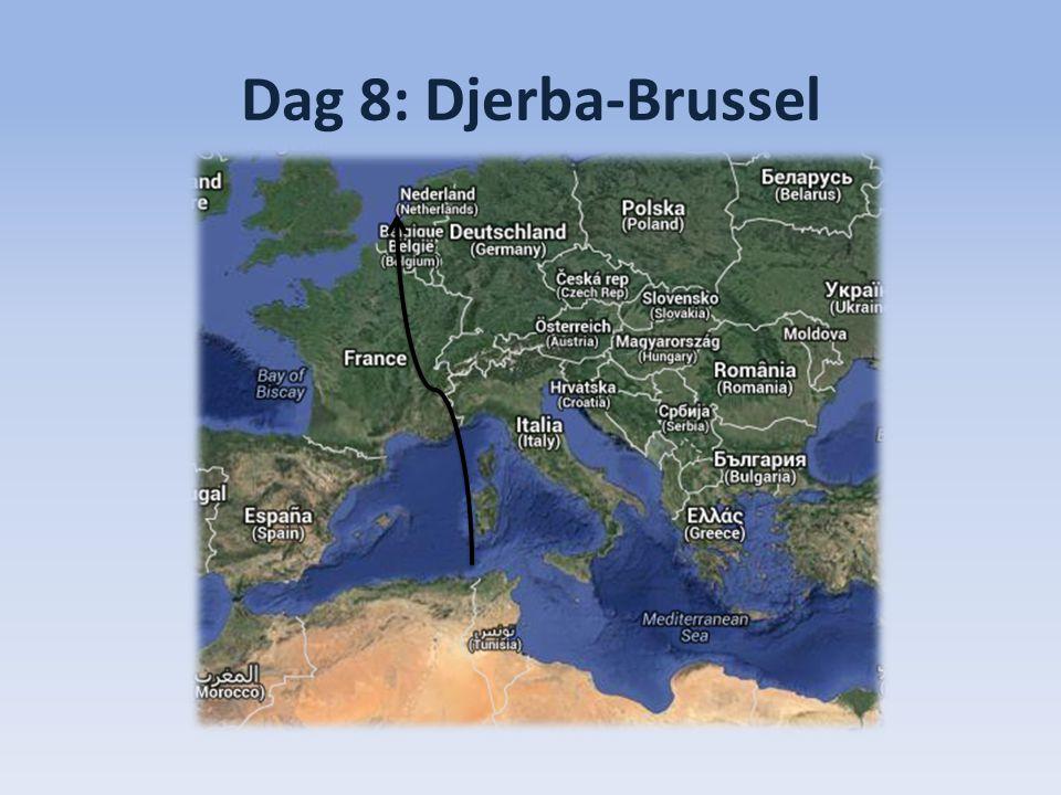Dag 8: Djerba-Brussel